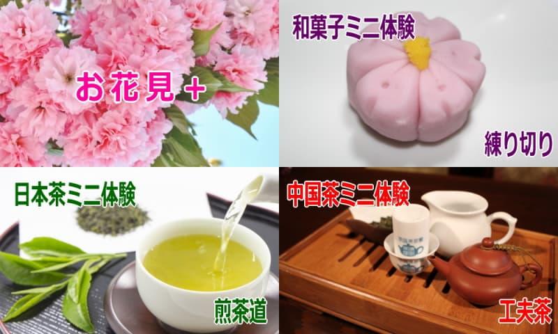 お茶と和菓子の体験教室
